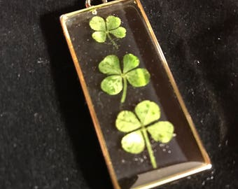 Three real four leaf clovers in a gold tone pendent