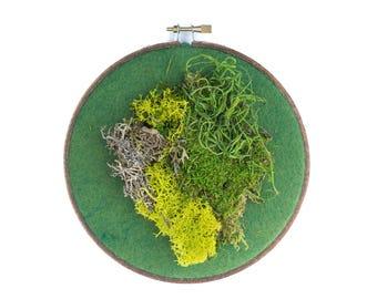 Moss Art, Real Moss Embroidery Hoop Wall Art