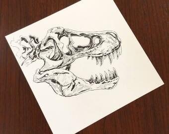 Tyrannosaur Skull no. 4