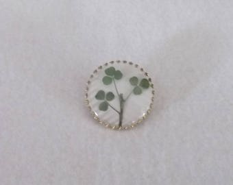Vintage Real Irish Shamrock Captured in a Dome - Brooch Pin 1960's