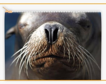 Sea Lion Makeup Bag