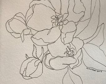 flowers: original pen and ink 5x7 drawing sketch