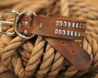 Leather Dog Collar - customized for your dog or choose from inventory!