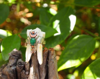 Cow Tooth And Copper Ring
