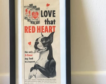 Vintage Red Heart Dog Food Ad Black White Framed Art Magazine Boston Terrier