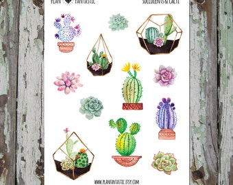 Watercolor Bullet Journal Stickers  - Succulent Planner Stickers - Cactus - deco - bujo