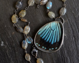 Real Butterfly Necklace. Sterling Silver Butterfly Necklace. Papilio Zalmoxis Butterfly Pendant. Sterling Labradorite Necklace.