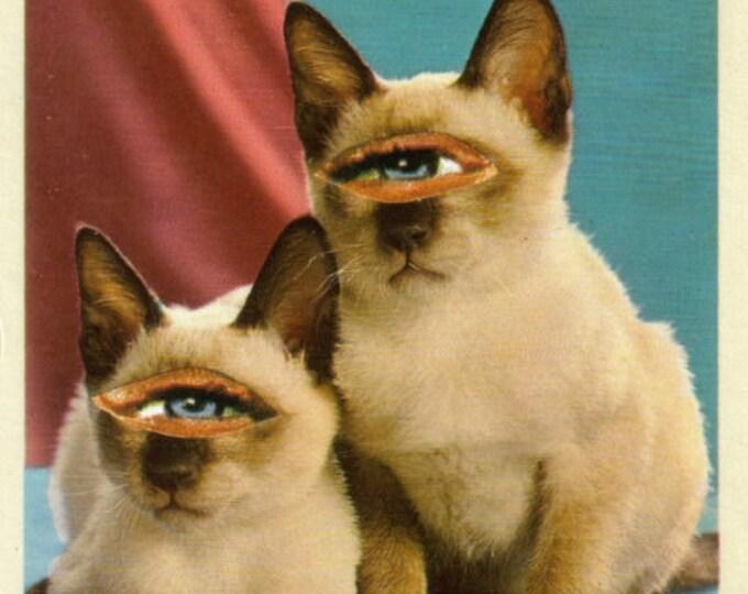 Siamese Cat Art, Weird Kitty Artwork, Funny Animal Postcard