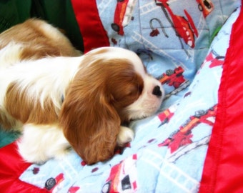 Pet Blanket: Minky custom pet security quilt with satin edge14 x 20 inch, furry friend!