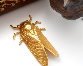 BRASS * (2 Pieces) Bug Beetle CICADA Stamping ~ Jewelry Ornament Findings ~ Brass Stamping (FA-6044)