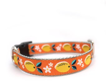 "1"" Juicy Lemons Orange  buckle or martingale dog collar"