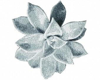 Succulent Letzrock Machine Embroidery Designs..3082
