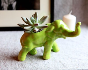 Ceramic Elephant Planter in Stoneware with Lime Green Glaze