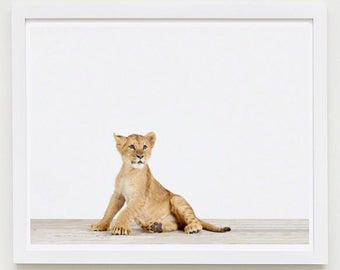 Baby Animal Nursery Art Print. Lion Cub. Animal Nursery Decor. Baby Animal Photo.