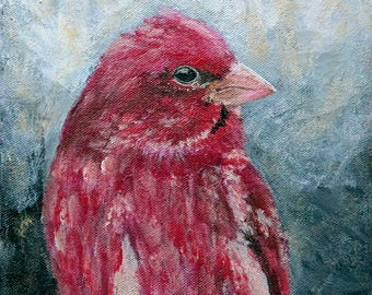 Bird Painting - Purple Finch Acrylic - 8x8 Fine Art - Contemporary Wall Decor - Red Bird - Songbird Home Decor - Colorful Small Art Original
