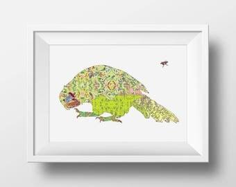 Kakapo Art Print - 13 x 19, 11 x 14, 8.5 x 11, 8 x 10, 5 x 7