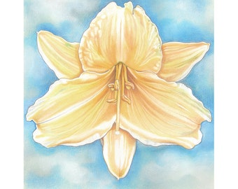 "Floral Art Print, limited edition - ""Yellow Daylily"""