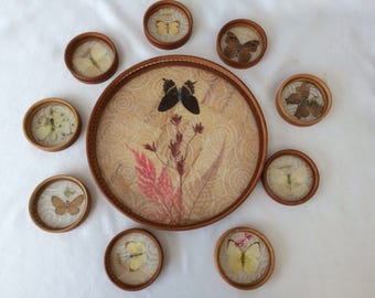 Vintage Butterfly Tray and 8 Coasters