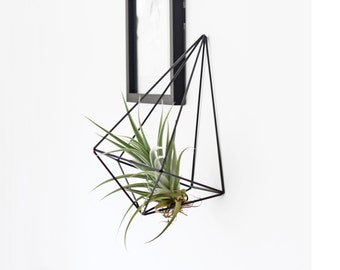 VENTI - Modern Hanging Mobile - Geometric Sculpture - Himmeli - Air Plant Holder
