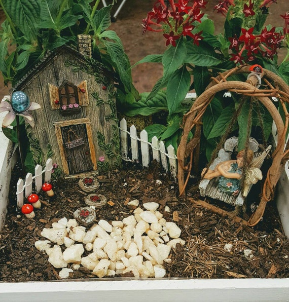 Ladybug Fairy Garden Kit - (2) King Alfred Daffodil Bulbs Included!  Add your own plants until these bloom!