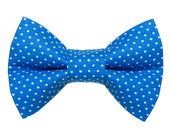 """Cat Bow Tie - """"The Caviar Dream"""" - Blue with White Polka Dots"""