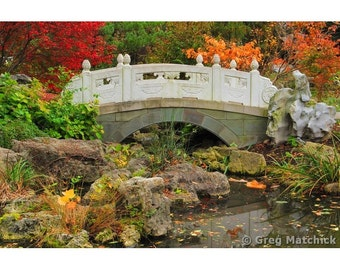 Fine Art Color Nature Photography of Fall Colors Accenting a Bridge in a Chinese Garden