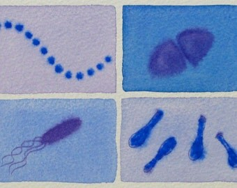 Bacteria in Lavender and Blue - original watercolor painting - microbes
