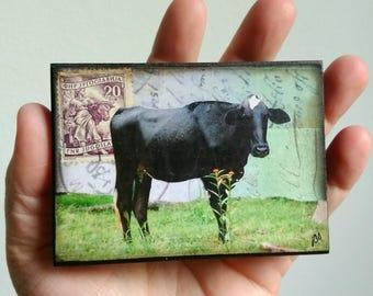"Cow Art, Mini Original, Mixed Media Photography, Cow Photography, Mini Painting, ACEO mini art, 2.5"" x 3.5"", Brahma Cow, Farm Art, ""Brahma"""