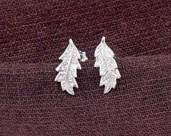 1 pair of 925 Sterling Silver Small Feather Stud Earrings 7x15mm.   :er1097