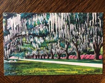 De La Ronde Oaks Bersailles Plantation New Orleans 1930s Linen