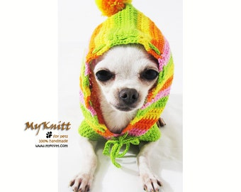 Dog Clothes Small, Rasta Dog Hoodie, Striped Sweater Colorful, Crocheted Dog Clothes, Dachshund Clothes DK971 by Myknitt - Free Shipping
