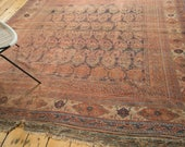 7x8 Antique Rare Afshar Carpet