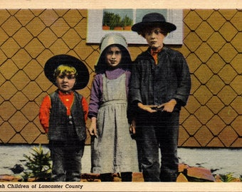 Lancaster County, Pennsylvania, Amish Children - Vintage Postcard - Postcard - Unused (O)