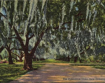 New Orleans, Louisiana, Pakenham Oaks - Vintage Postcard - Linen Postcard - Unused (D)