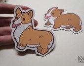 SALE cute corgi fridge magnets