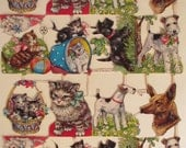 German AFKH glittery cat and dog Scraps