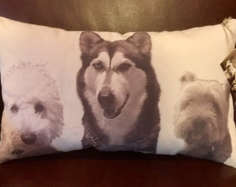 Personalized Pet Pillow on Canvas with 2 or 3 pets