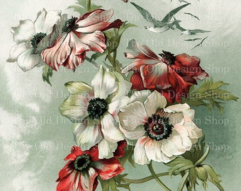Vintage Floral Art by Johanna Beckmann White Pink Red Flowers Birds Flying Above Printable Digital Download JPG Image