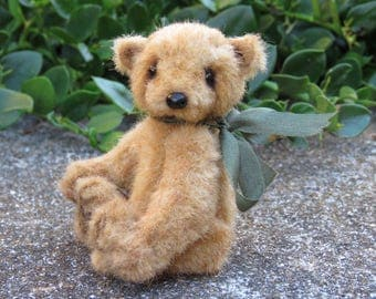 Caramello Bear