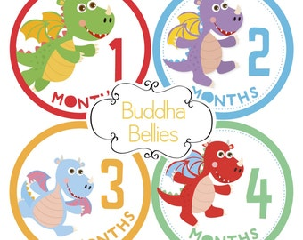 Dragon Baby Month Stickers - Baby Boy or Baby Girl - Gender Neutral Baby Stickers - Dragon Nursery - Dragon Baby Shower