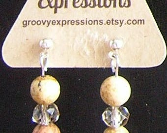 Natural Picture Jasper and Crystal Dangle Earrings with Stainless Steel Posts