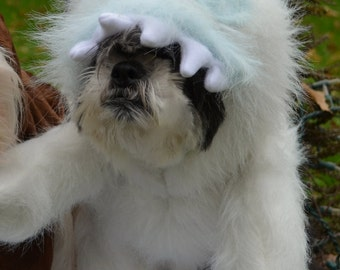 Abominable Snowman (Looks like Bumble) Christmas Dog Costume for Christmas Cards,Instagram more!