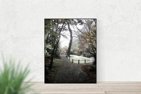 Japanese Whispers - Autumn Fall Photography, Japanese Tea Gardens, Golden Gate Park, Soft Bokeh, Modern Home Decor