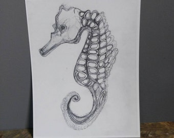Print of original artwork pencil sketch ocean seahorse nautical nature black and white underwater art history curiosity study geometric grey
