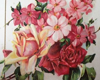 Edwardian Postcard for Craft Project-Beautiful Pink Flowers