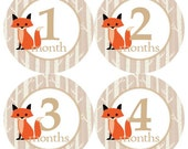 Baby Monthly Milestone Growth Stickers Fox Tan Birch Trees Woodland Forest Rustic Nursery Theme MS932 Baby Shower Gift Baby Photo Prop