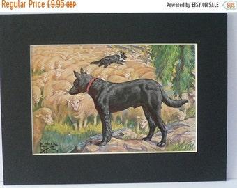 SALE AUSTRALIAN KELPIE Dog Vintage Mounted 1958 Edward Herbert Miner dog plate print Unique Birthday Anniversary Thank you Congratulations