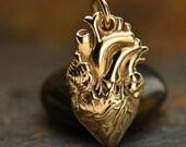 Natural Bronze Anatomical Heart Charm