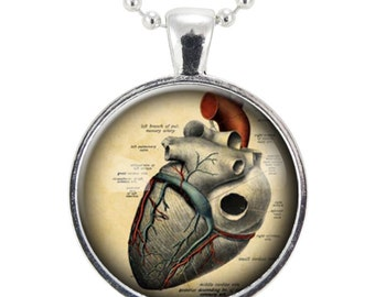 Anatomical Heart Necklace, Gothic Jewelry, Anatomy Pendant, Goth Fashion (1125S25MMBC)