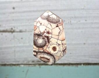 Birds Eye Rhyolite gemstone freeform cabochon 41x25mm